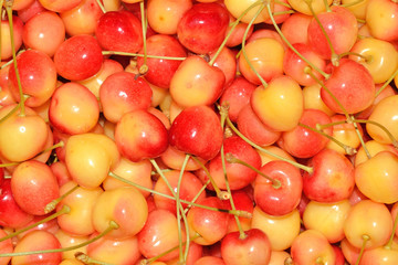 Yellow cherries background