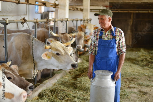 Farmer is working on the organic farm with dairy cows - 67245930
