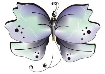 Farfalla pace