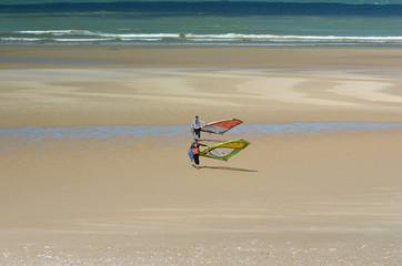 windsurfeur