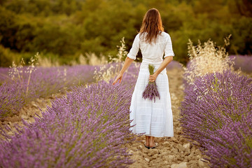 Beautiful young woman, holding lavender in a field