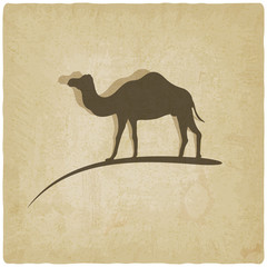 camel old background