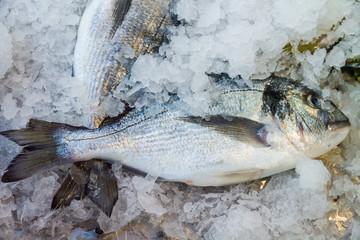 Raw fish on fish market near restaurant