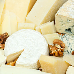 various sliced cheeses and walnuts