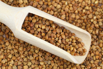 Uncooked buckwheat on wooden scoop, close up