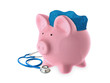Pink Piggy Bank Health