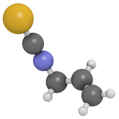 Allyl isothiocyanate mustard pungency molecule.