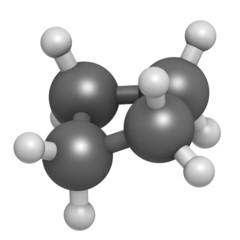 cyclobutane cyclic alkane (cycloalkane) molecule.