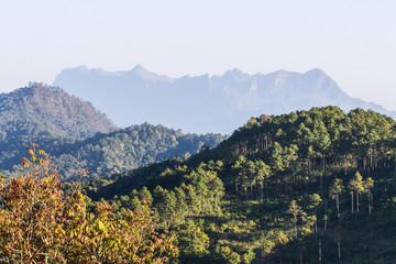 Doi Luang Chiang Dao, View Form Wianghaeng Chiangmai Thailand