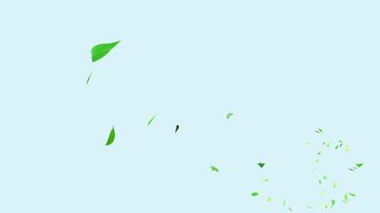 舞い散る葉っぱ