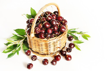 Wicker basket full of ripe red cherry