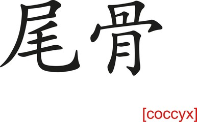 Chinese Sign for coccyx