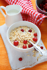 Oatmeal in bowl with cranberries