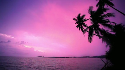 Palm tree silhouette at sunset on tropical beach Koh Samui.