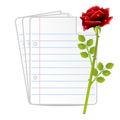 paper folias and red rose