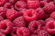 obraz - Raspberry background