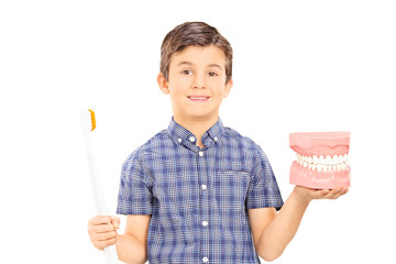 Little boy holding denture and a toothbrush