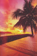 Tropical sunset with coconut palm tree over water