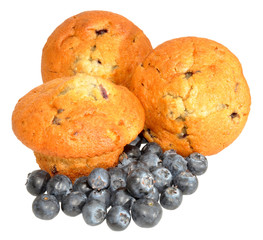 Blueberry Muffins With Fresh Blueberries