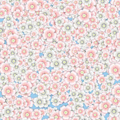 Background of pink and white cherry blossoms.
