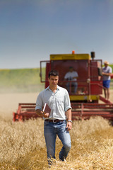 Attractive man at harvesting