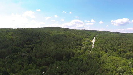 wood  with road on hill .Aerial