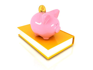 Piggy Bank with a gold dollar coin on book.