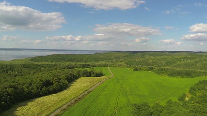 Green field, sea and wood. Aerial  rural landscape