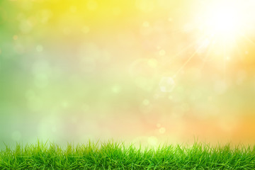 Freshness Abstract natural sunlight backgrounds