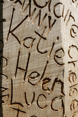 Names carved into wood
