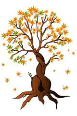 Herbstbaum wirft seine Blätter ab
