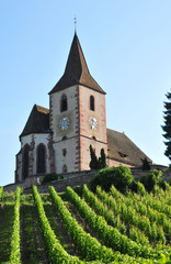 Haut Rhin, the picturesque village of Hunawihr in Alsace