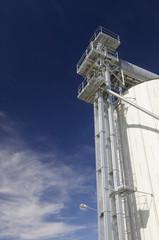 White silo