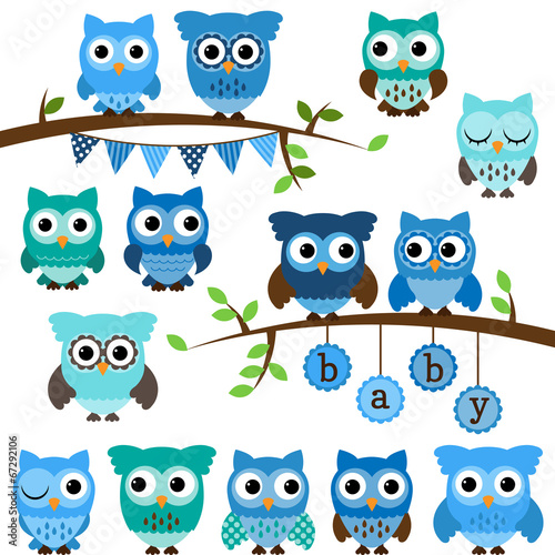 Vector Collection of Boy Baby Shower Themed Owls and Branches - 67292106