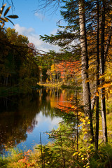 Quiet lake in the autumn forest