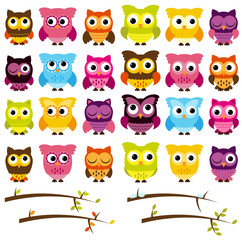 Vector Collection of Cute Owls