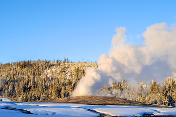 Old Faithful in Yellowstone Park