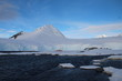 Sailing Antarctica, Port Lockroy
