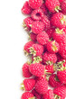canvas print picture - red raspberry