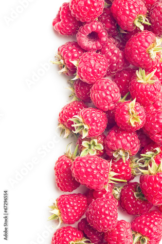 canvas print picture red raspberry