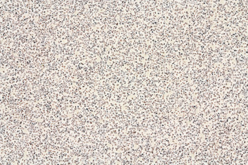 Large grains of abrasive material on a white background