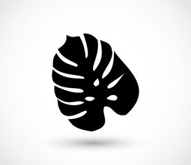 Tropical exotic leaf shape vector