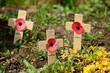 Remembrance cross with poppy - 67298928