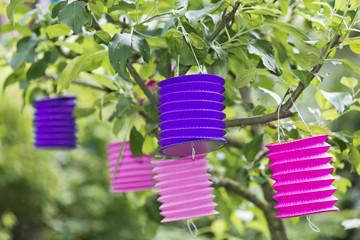 paper lantern in a tree