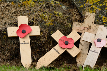 Remembrance crosses some with poppy