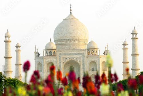 Staande foto India Taj Mahal in Agra, India, Asia