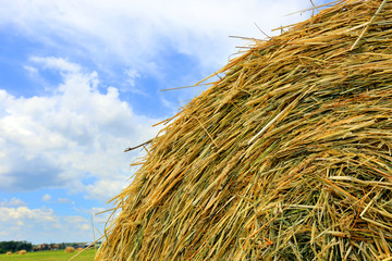 hay stack close-up
