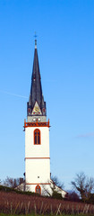 tower of st. Martin church in Eltville Erbach