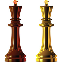 vector of the chess pieces, black and white king