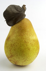 Ripe yellow pear with a dead leaf on a white background